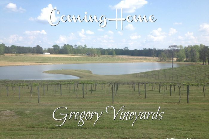 Gregory Vineyards is like coming home with its wide plank front porch with rocking chairs, Calabash style seafood restaurant and wine made from muscadine grapes. Got To Be NC Festival. Homegrown Fare.