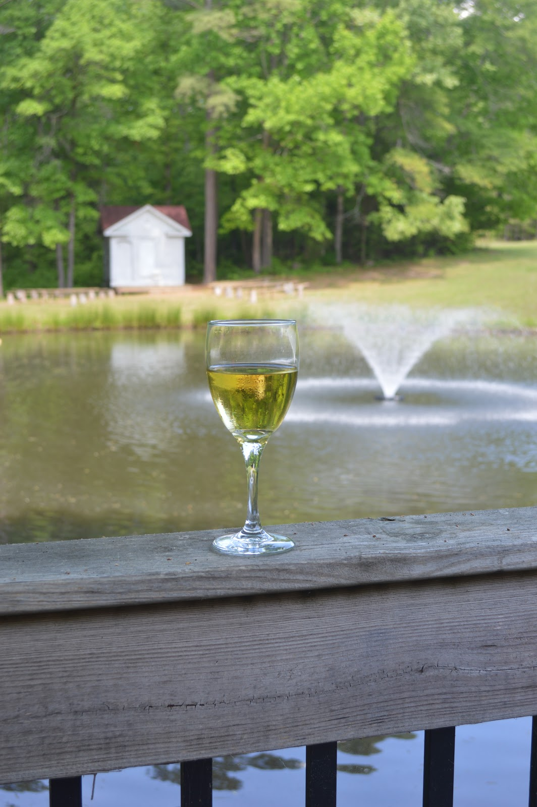 Doyle's Vineyard in Durham, NC . Wine in the 919 , Triangle area, NC.