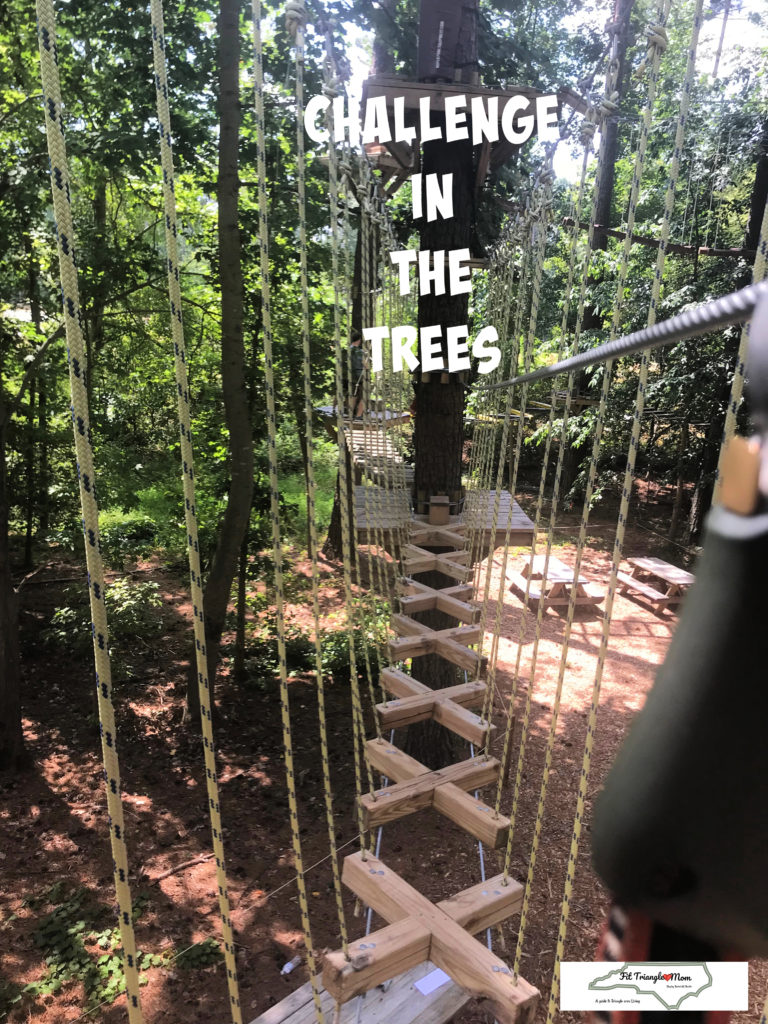 challenge in the trees, raleigh, treerunner