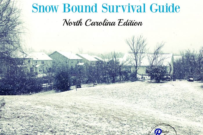 snow bound survival guide, snow day in the south